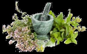 mills-farm-herbs