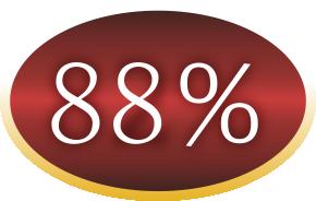 88procent Puppy