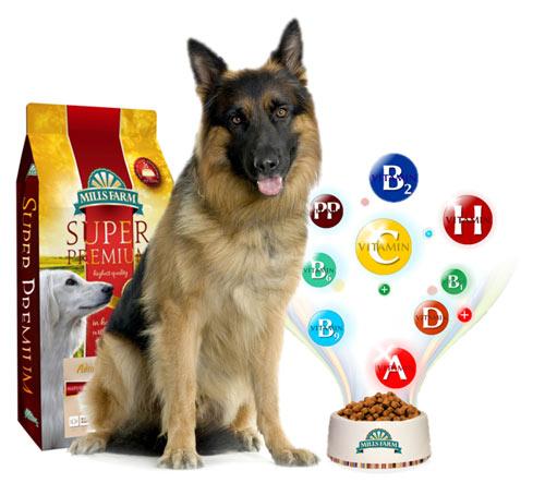 dog-vitamins2 Mills Farm duńskie karmy dla psów - O nas
