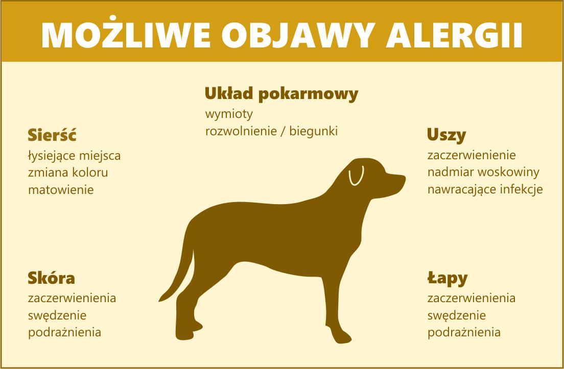 mozliwe-przyczyny-alergii2 Karmienie psów wrażliwych lub ze skłonnością do alergii Porady żywieniowe