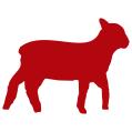 MILLSFARM-jagniecina (M) Lamb, Peas & Potato