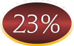 23procent